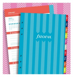 Stripes Illustrated Diary Refill Pack A5 2021